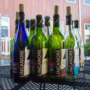 linganore wine and reggae festival 2015